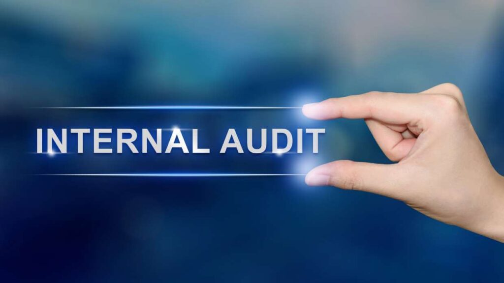 Outsourced Internal Auditing-Internal Auditing Pros of America